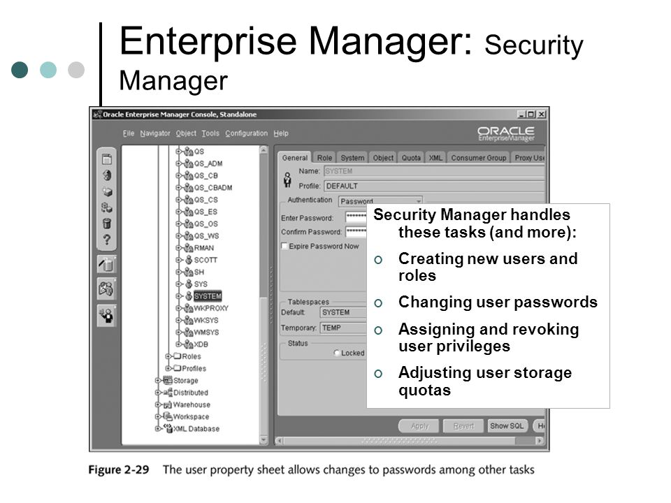 Enterprise Manager: Security Manager