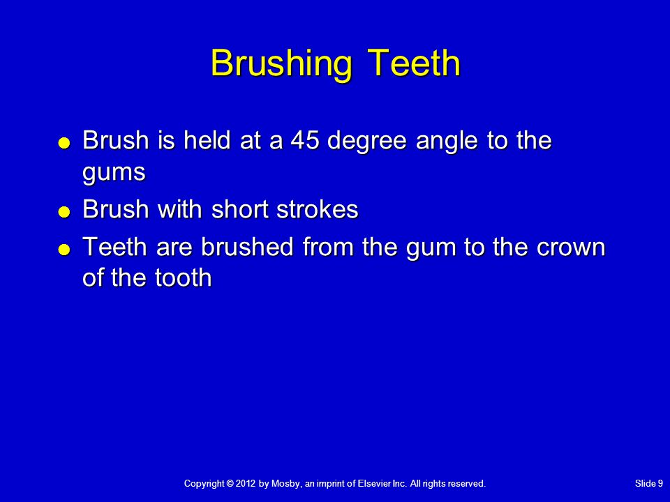 Brushing Teeth Brush is held at a 45 degree angle to the gums