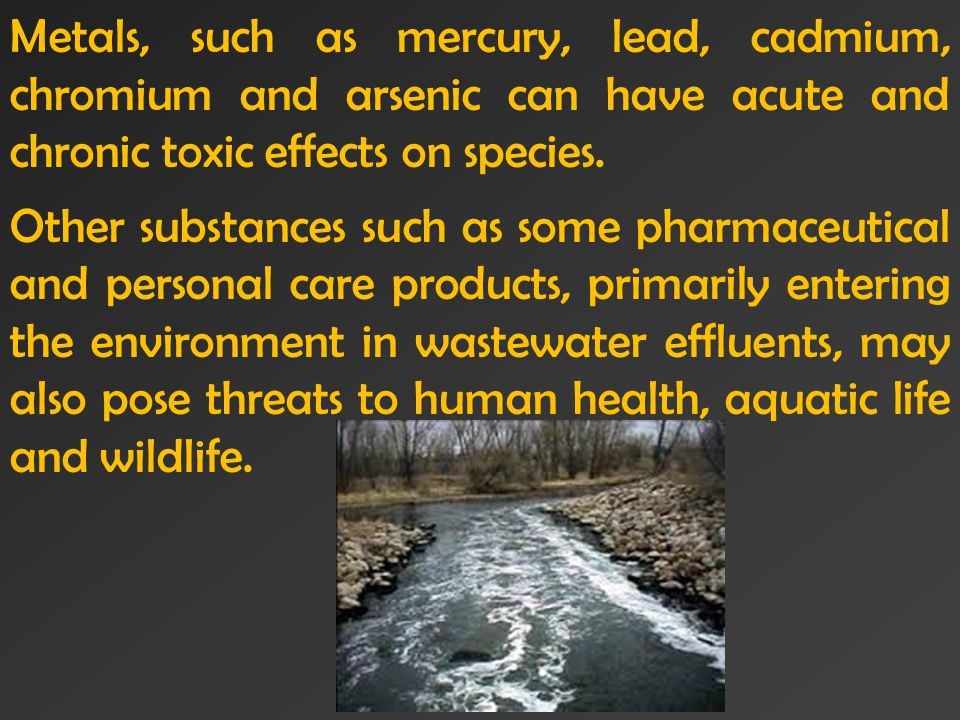Metals, such as mercury, lead, cadmium, chromium and arsenic can have acute and chronic toxic effects on species.