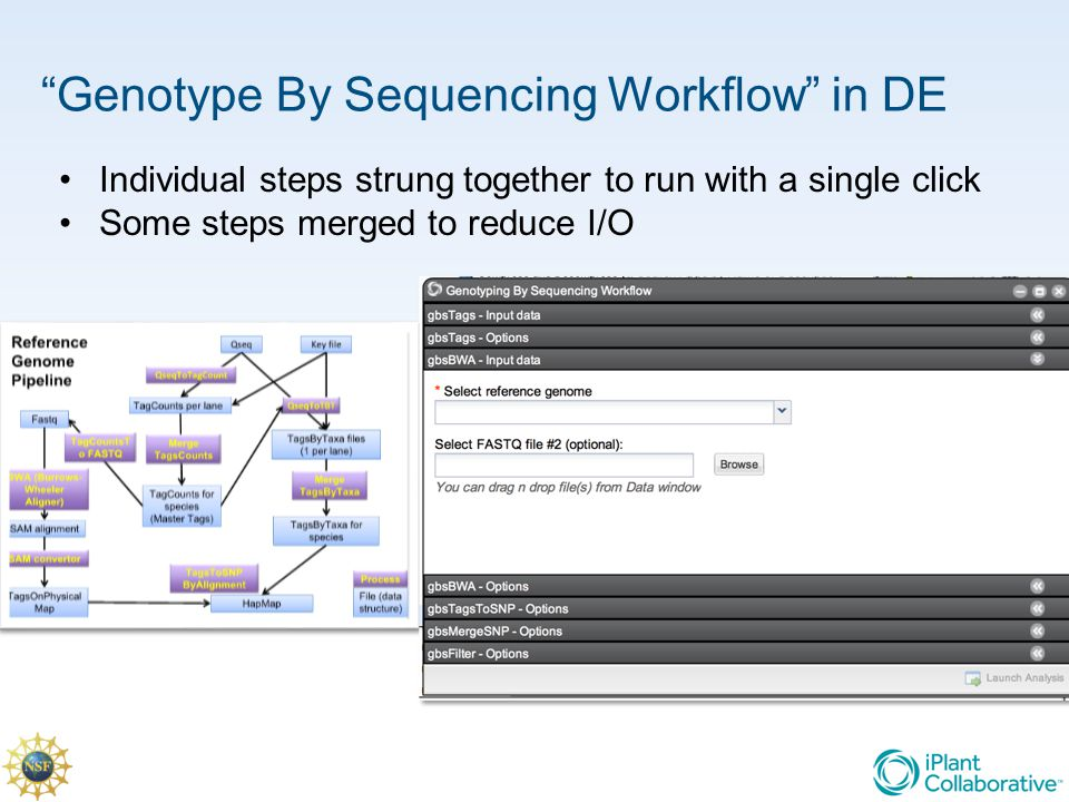 Genotype By Sequencing Workflow in DE