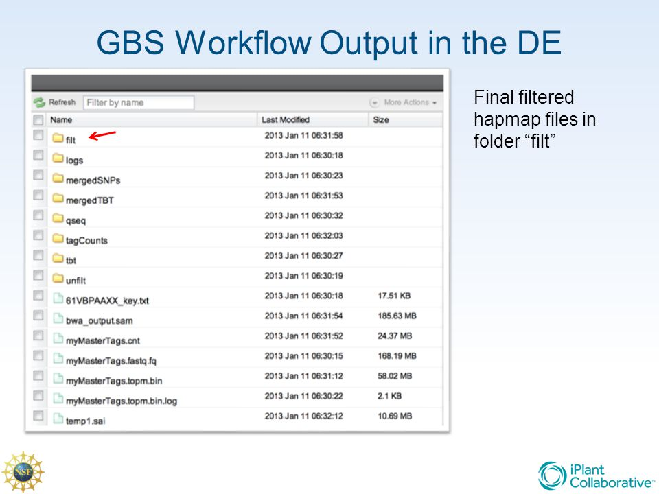 GBS Workflow Output in the DE