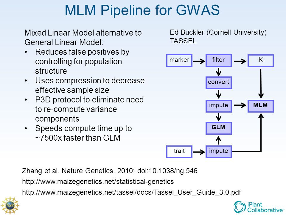MLM Pipeline for GWAS Mixed Linear Model alternative to General Linear Model: Reduces false positives by controlling for population structure.