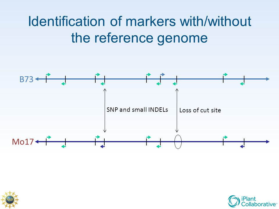 Identification of markers with/without the reference genome