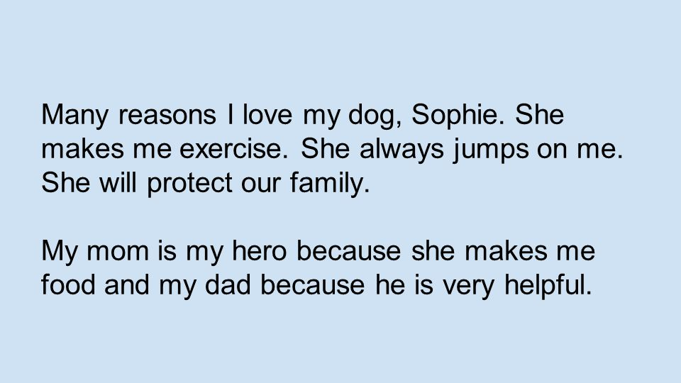 Many reasons I love my dog, Sophie. She makes me exercise