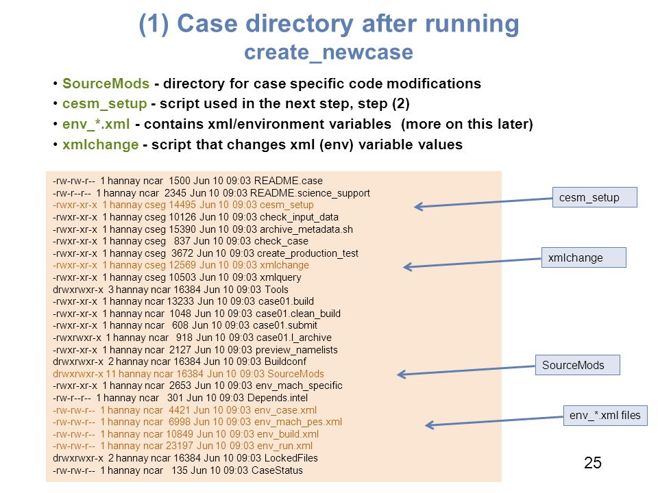 (1) Case directory after running create_newcase