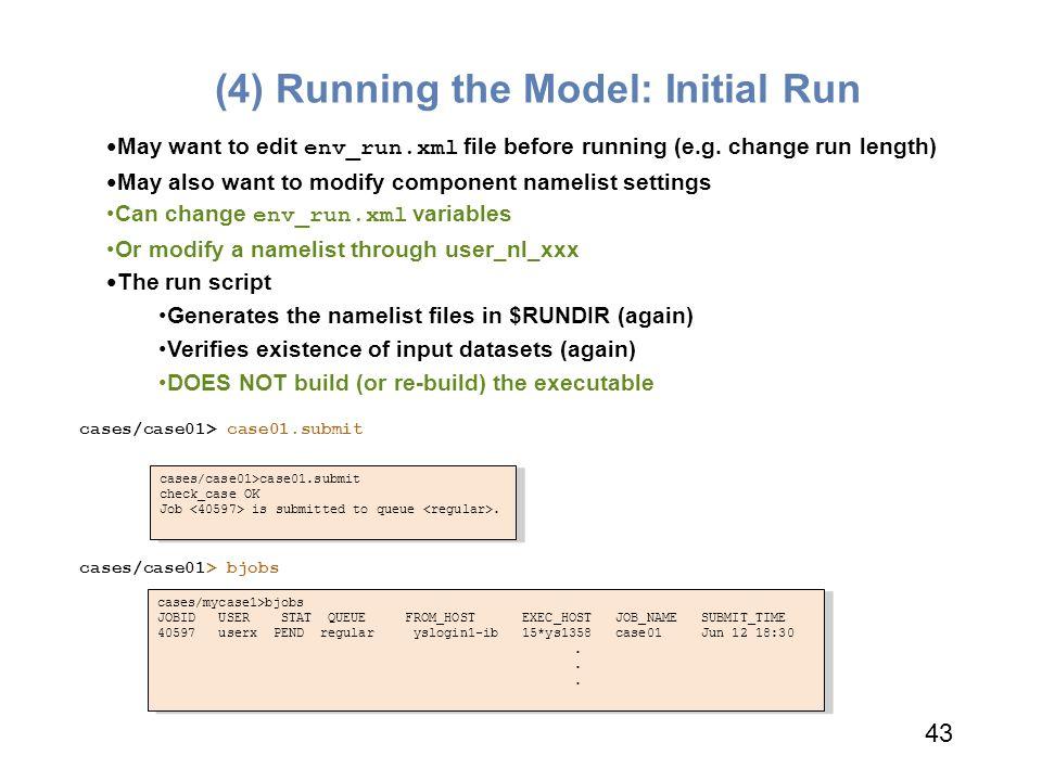 (4) Running the Model: Initial Run