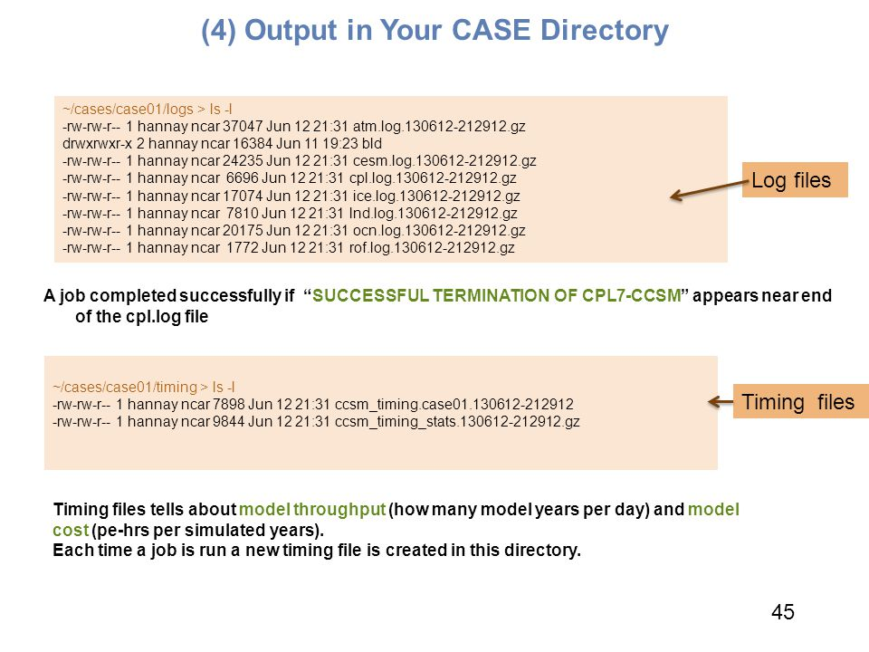 (4) Output in Your CASE Directory