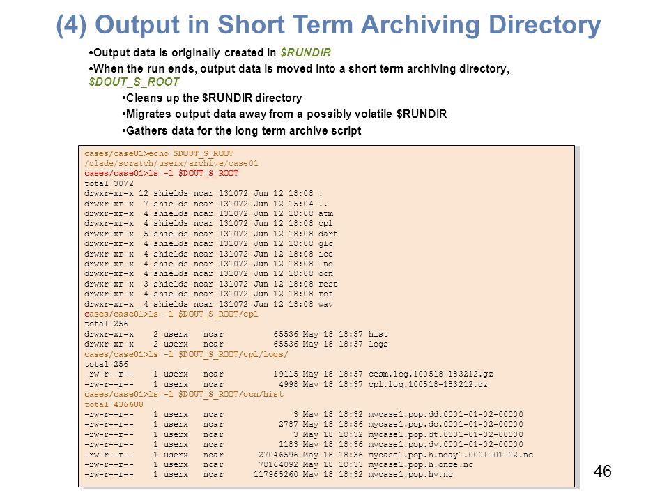 (4) Output in Short Term Archiving Directory