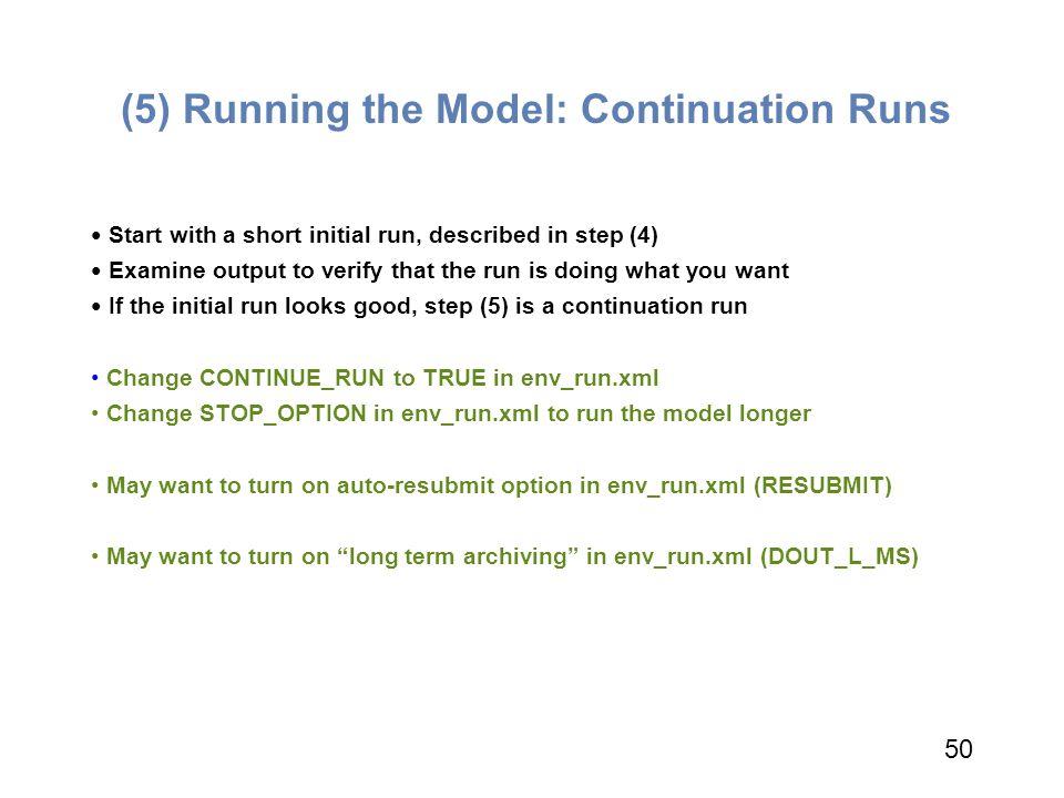 (5) Running the Model: Continuation Runs