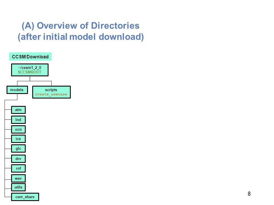 (A) Overview of Directories (after initial model download)