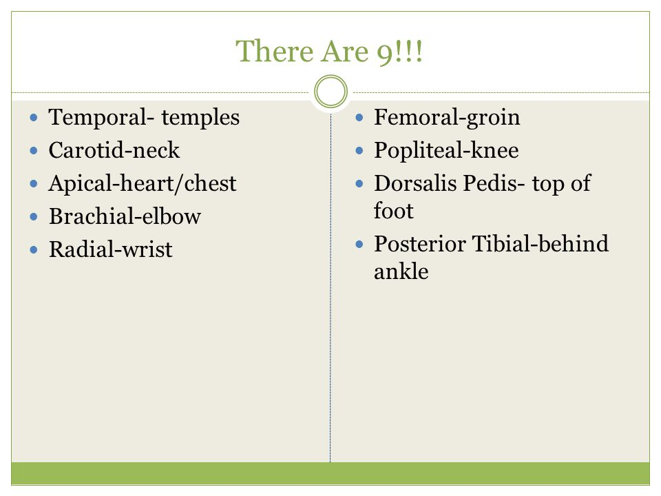 There Are 9!!! Temporal- temples Carotid-neck Apical-heart/chest