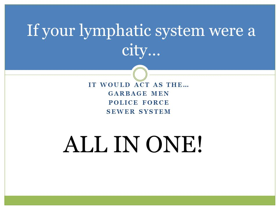 If your lymphatic system were a city…