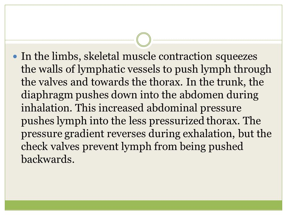 In the limbs, skeletal muscle contraction squeezes the walls of lymphatic vessels to push lymph through the valves and towards the thorax.