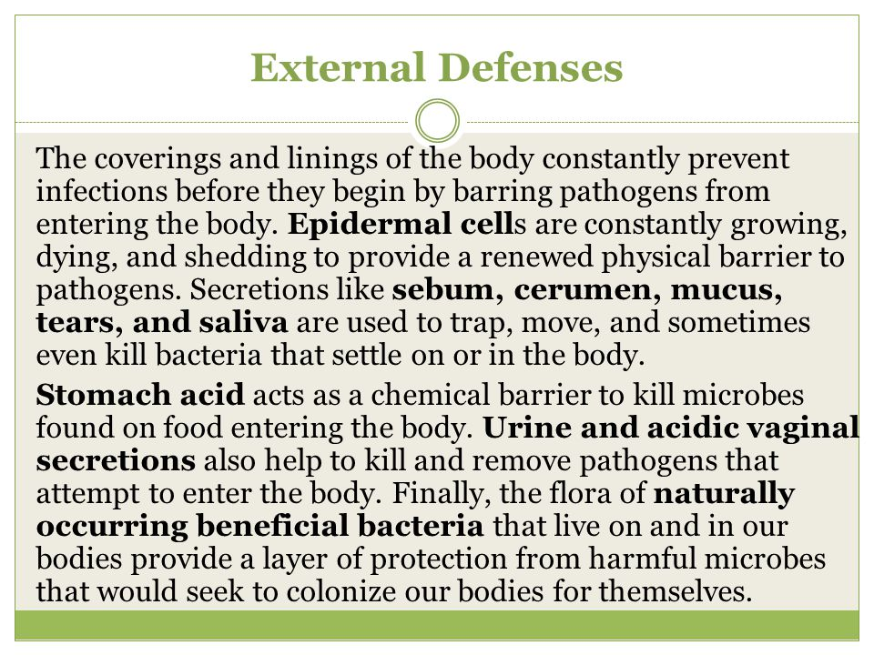External Defenses