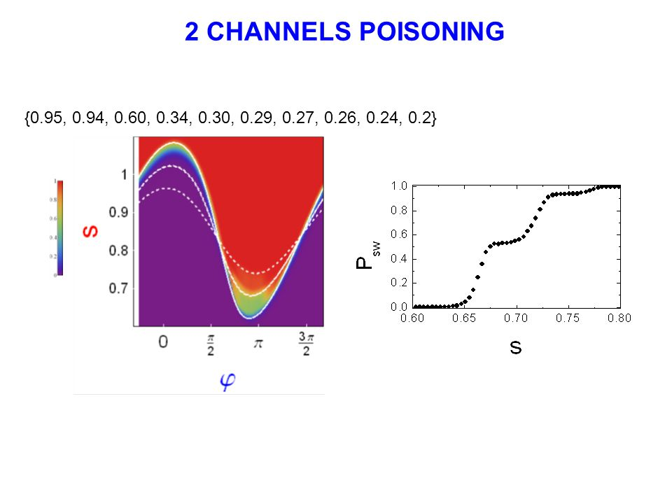 2 CHANNELS POISONING {0.95, 0.94, 0.60, 0.34, 0.30, 0.29, 0.27, 0.26, 0.24, 0.2}
