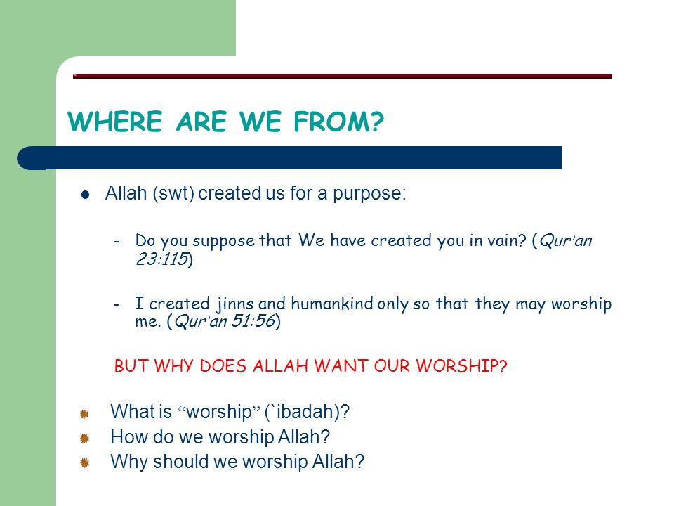WHERE ARE WE FROM Allah (swt) created us for a purpose:
