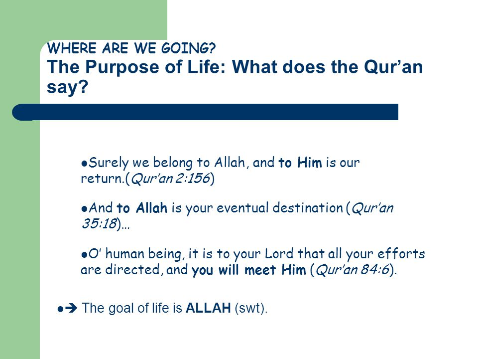 WHERE ARE WE GOING The Purpose of Life: What does the Qur'an say