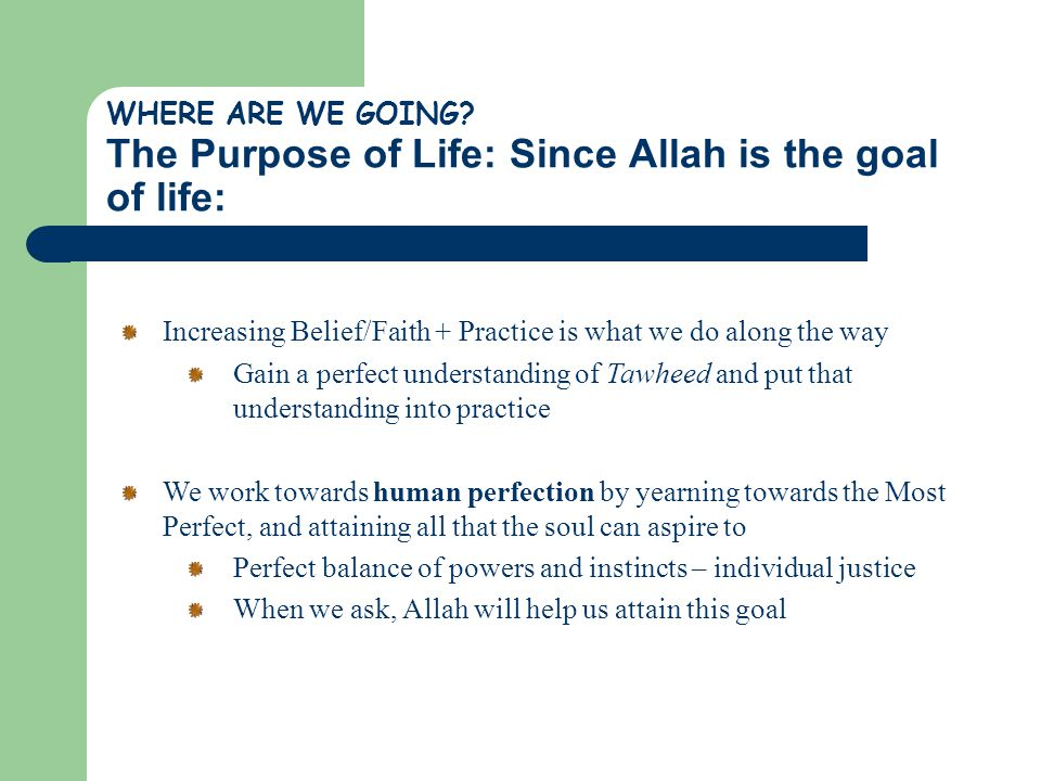 Increasing Belief/Faith + Practice is what we do along the way