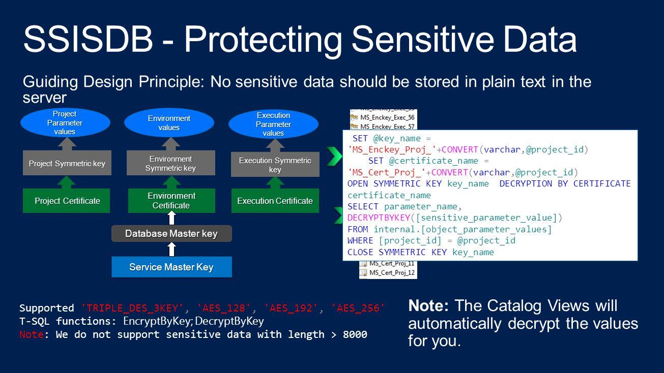 SSISDB - Protecting Sensitive Data