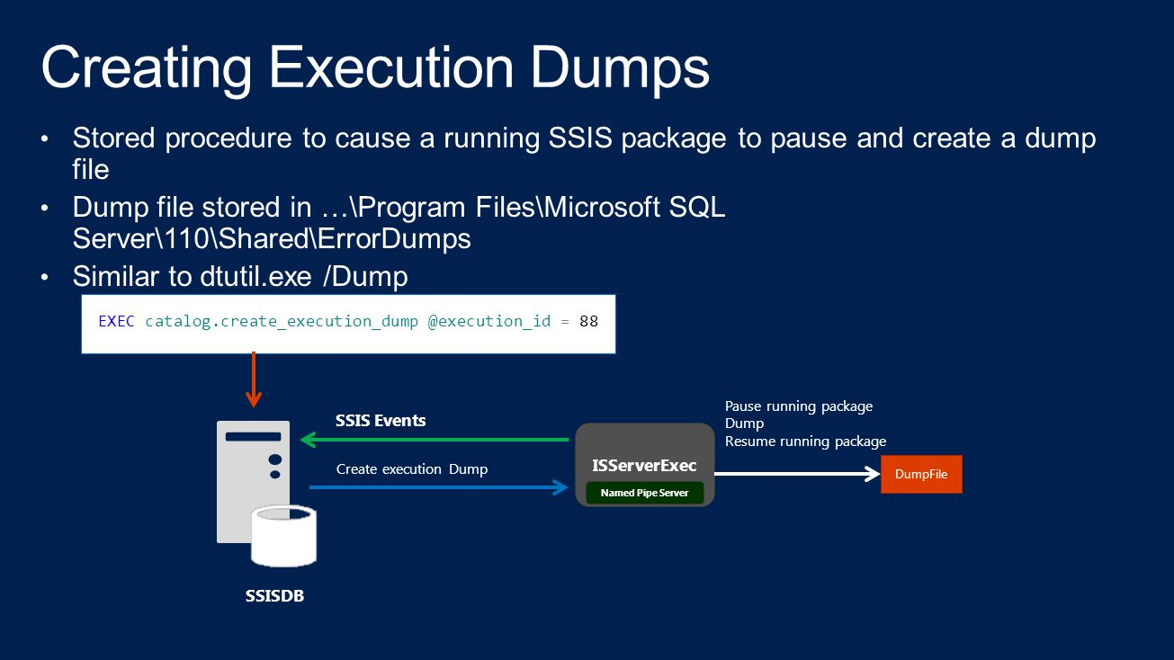 Creating Execution Dumps