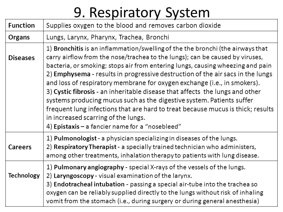 9. Respiratory System Function