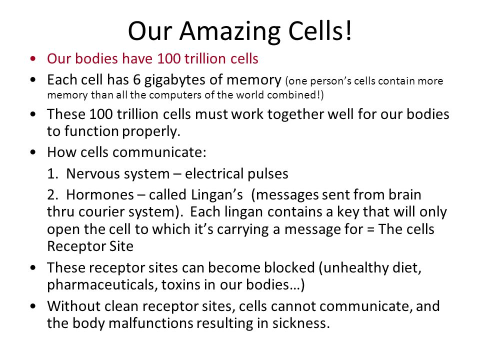 Our Amazing Cells! Our bodies have 100 trillion cells