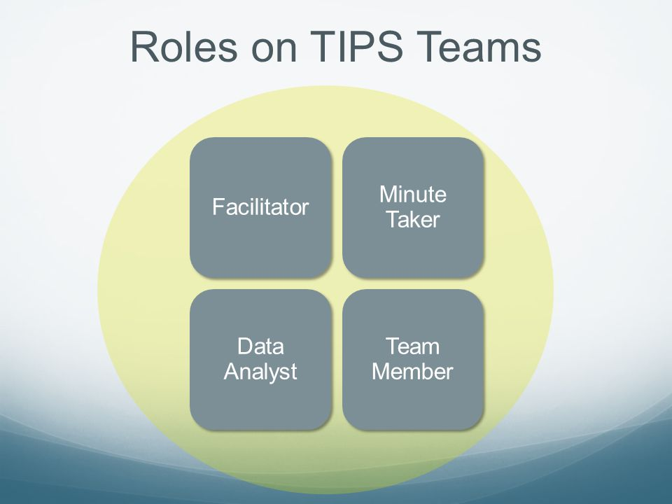 Roles on TIPS Teams Facilitator Minute Taker Data Analyst Team Member