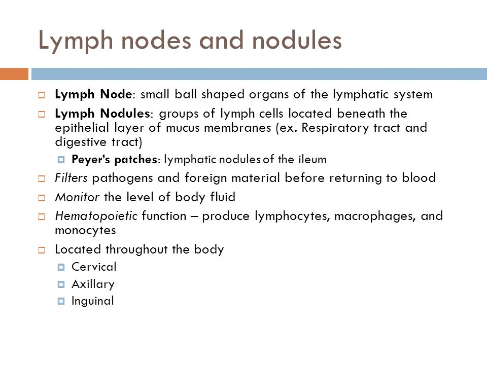 Lymph nodes and nodules
