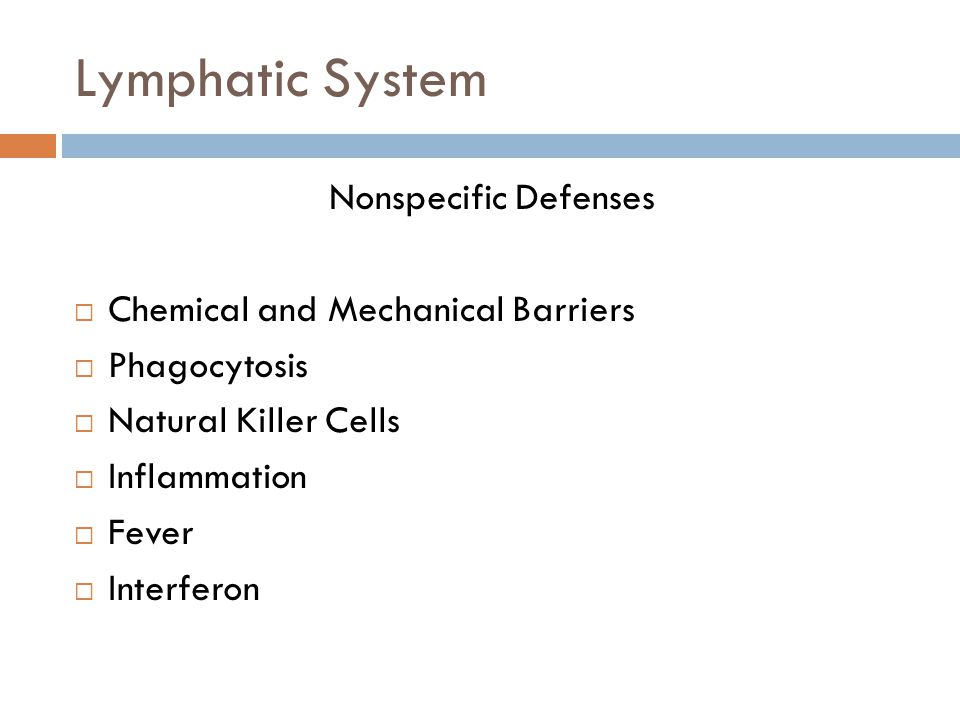 Lymphatic System Nonspecific Defenses Chemical and Mechanical Barriers