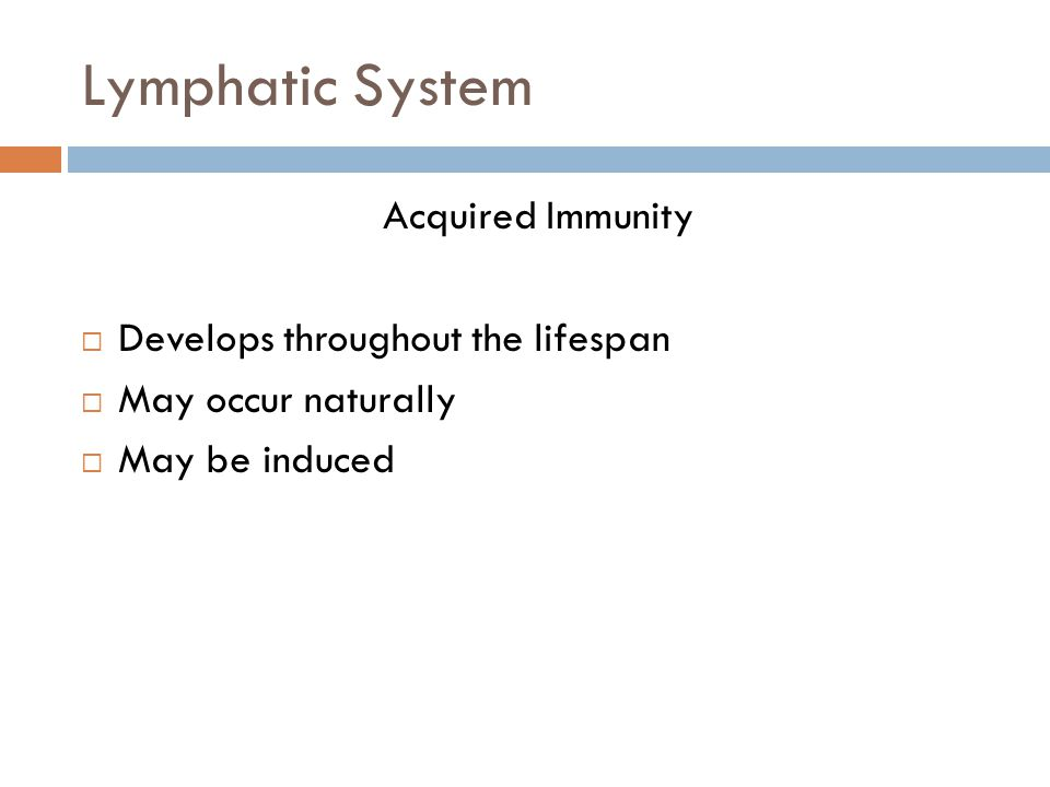 Lymphatic System Acquired Immunity Develops throughout the lifespan