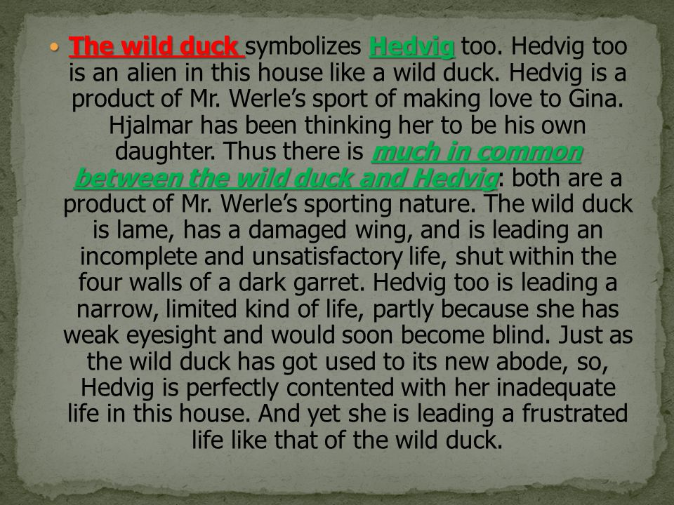 The wild duck symbolizes Hedvig too