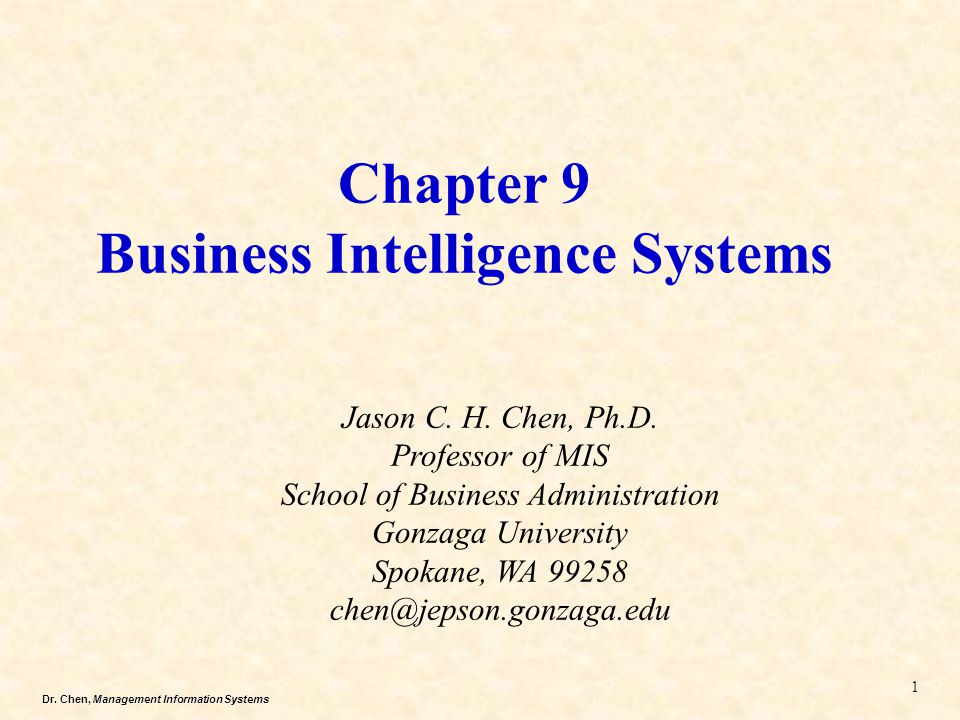 Chapter 9 Business Intelligence Systems