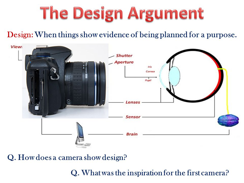 Design: When things show evidence of being planned for a purpose.