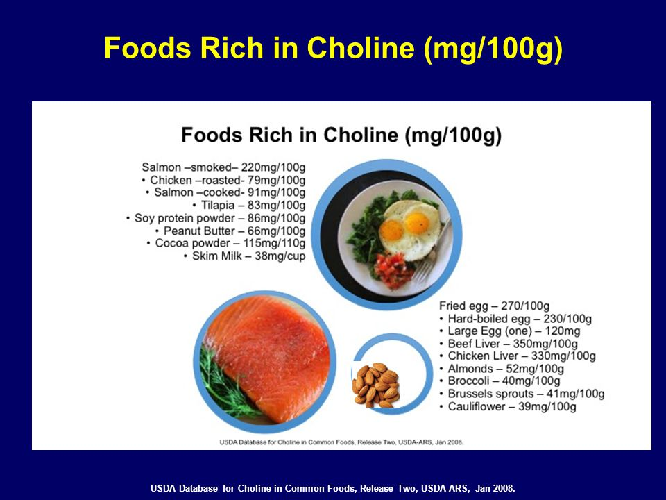 Foods Rich in Choline (mg/100g)