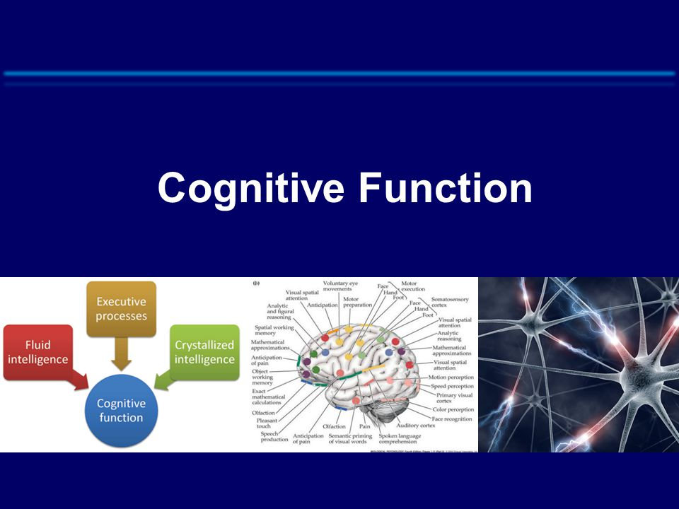 Cognitive Function