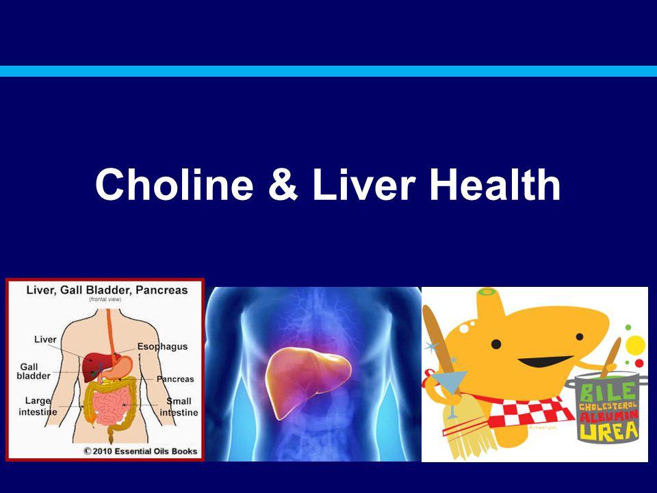Choline & Liver Health
