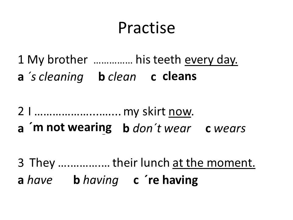 Practise 1 My brother …………… his teeth every day.