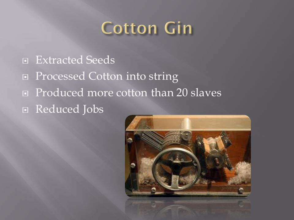 Cotton Gin Extracted Seeds Processed Cotton into string