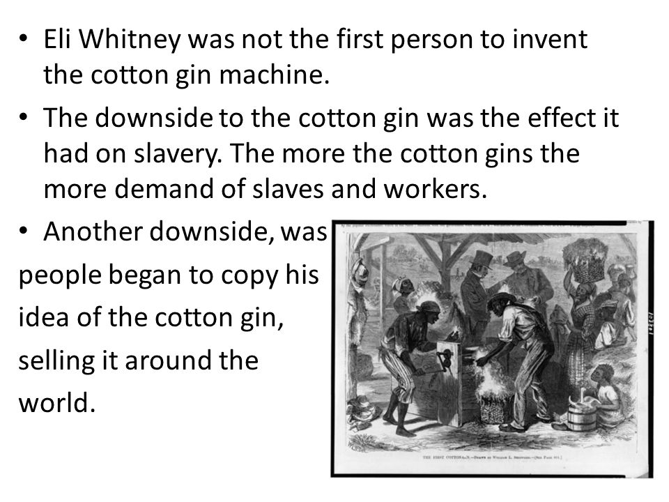 Eli Whitney was not the first person to invent the cotton gin machine.