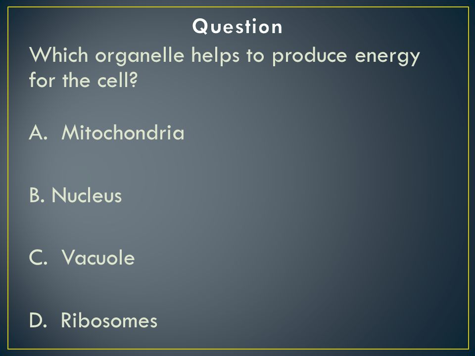Question Which organelle helps to produce energy for the cell A. Mitochondria. B. Nucleus. C. Vacuole.