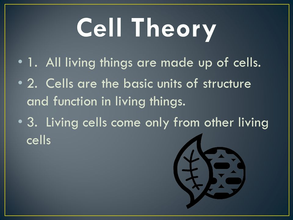 Cell Theory 1. All living things are made up of cells.