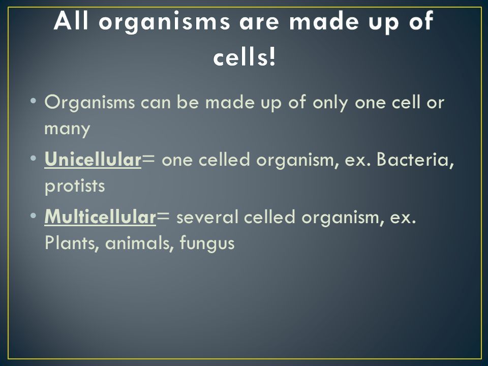 All organisms are made up of cells!