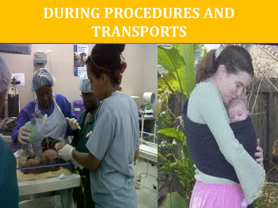 DURING PROCEDURES AND TRANSPORTS