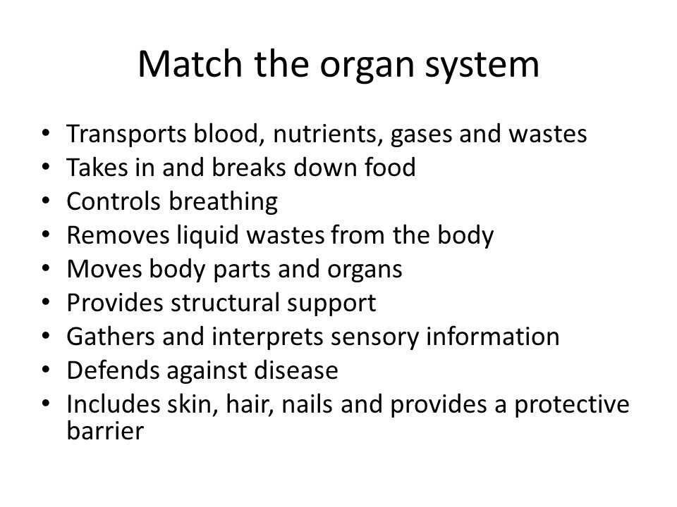 Match the organ system Transports blood, nutrients, gases and wastes