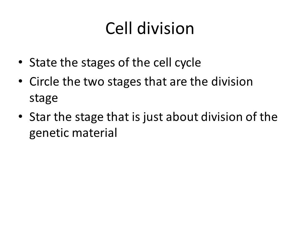 Cell division State the stages of the cell cycle