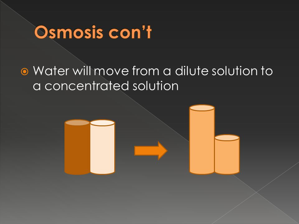 Osmosis con't Water will move from a dilute solution to a concentrated solution.