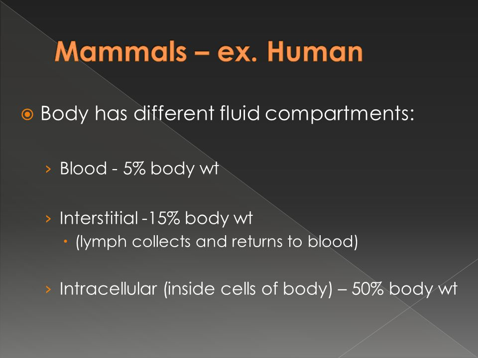 Mammals – ex. Human Body has different fluid compartments: