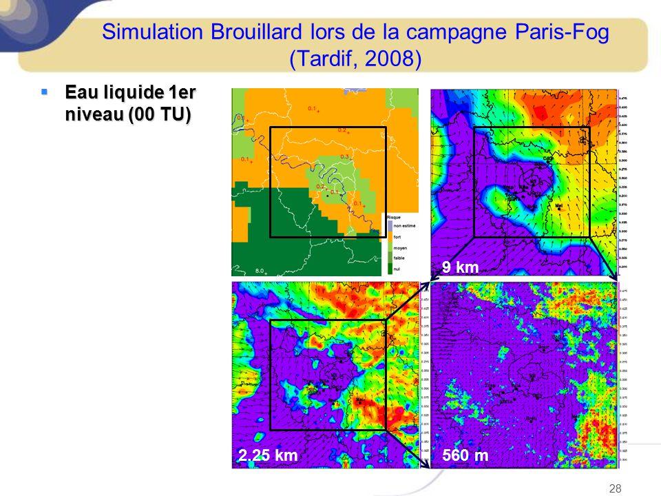 Simulation Brouillard lors de la campagne Paris-Fog (Tardif, 2008)