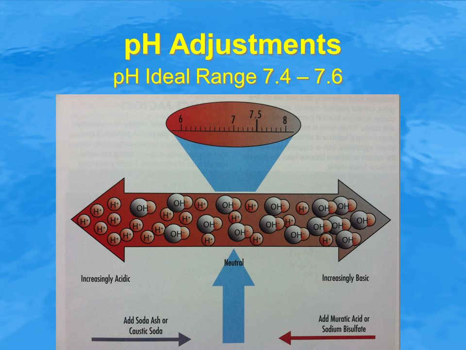 pH Adjustments pH Ideal Range 7.4 – 7.6