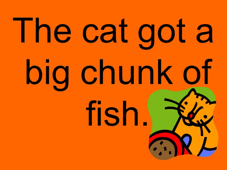 The cat got a big chunk of fish.